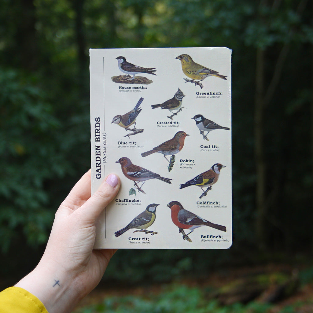 A collection of our favourite garden birds perched on the cover of this great quality A5 notebook. This sturdy ruled notebook is perfect for keeping your thoughts together, or for long woodland walks spotting a collection of creatures. Sturdy and wipeable, a Pretty Odd office favourite.