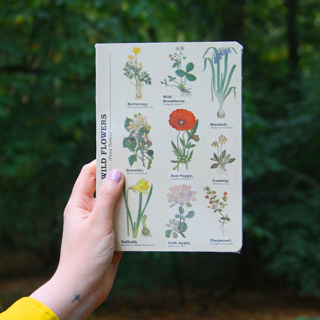 This elegantly put together notebook features beautiful illustrations of some of our most celebrated wild flowers. Great quality and with gorgeous illustrations on the cover, this book is perfect for making pretty work of jotting down your thoughts and ideas. Sturdy and wipeable, a useful and thoughtful gift for you or a loved one!