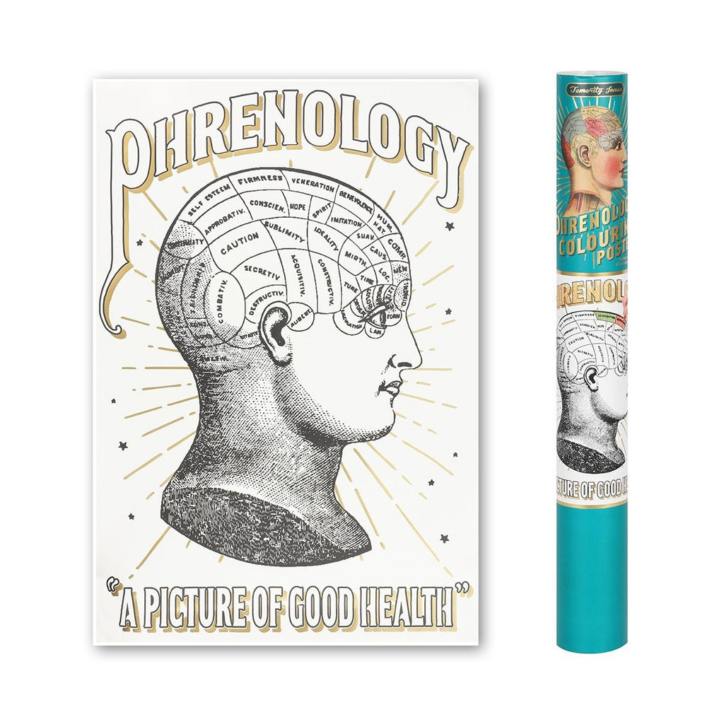 A picture of good health! People will love studying the pseudoscience of phrenology with this gorgeous colour-in poster. This vintage-inspired, labelled illustration features gold leaf accents and can be easily framed both coloured and uncoloured. Perfect for yourself to take some time out and chill with, or great as a gift for a loved one who might need a break! This poster is presented in matching cardboard tube.