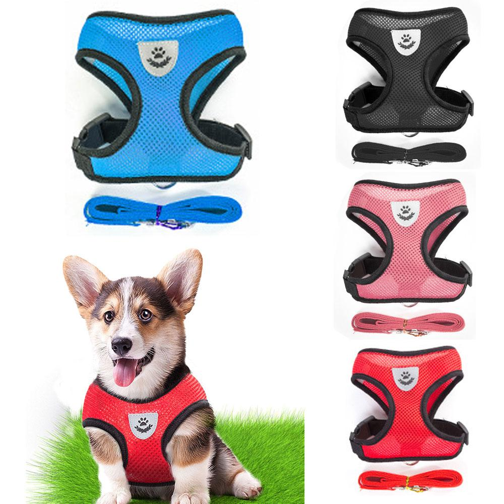 Small Dog Pet Harness and Leash My Gorgeous Pet