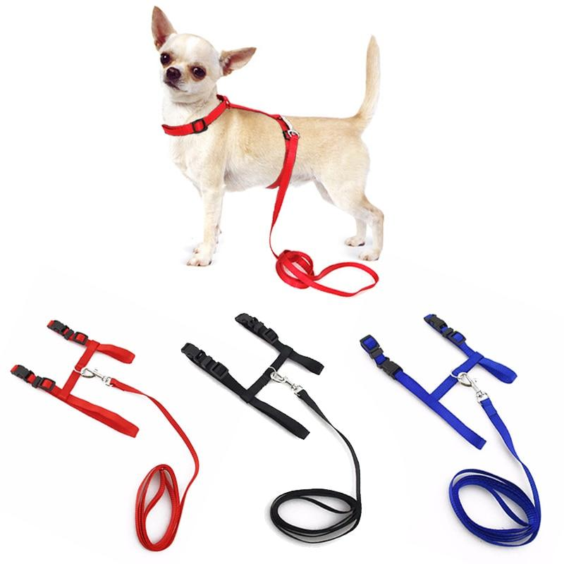Small Pet Dog Harness And Leash My Gorgeous Pet