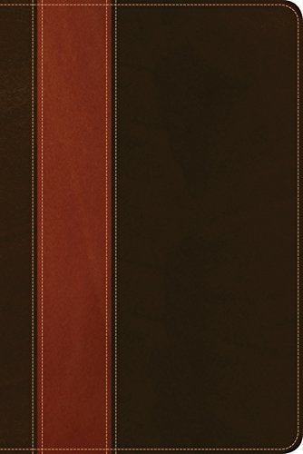 KJV Life Application Study Bible Personal Size, Brown/Tan Imitation Leather – Import