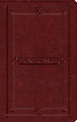 ESV Value Thinline Bible Imitation Leather – Import,