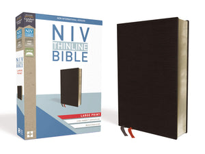 NIV, Thinline Bible, Large Print, Bonded Leather, Black, Red Bonded Leather – Large Print,