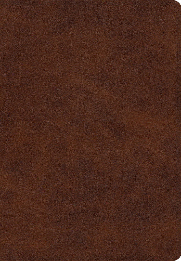 ESV Giant Print Bible Imitation Leather – Large Print,