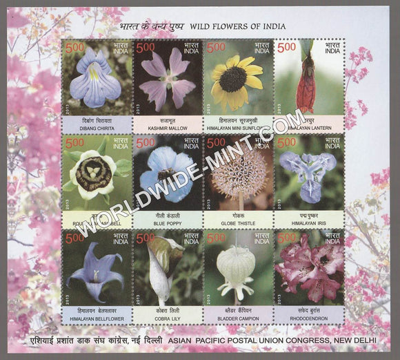 2013 INDIA Wild Flowers Sheetlet