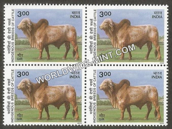 2000 Indigenous Breeds of Cattle-Gir Block of 4 MNH