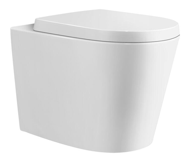 Ceramic Exchange Wall Faced White Floor Pan with Gebreit Matte White Flush Plate & Cistern