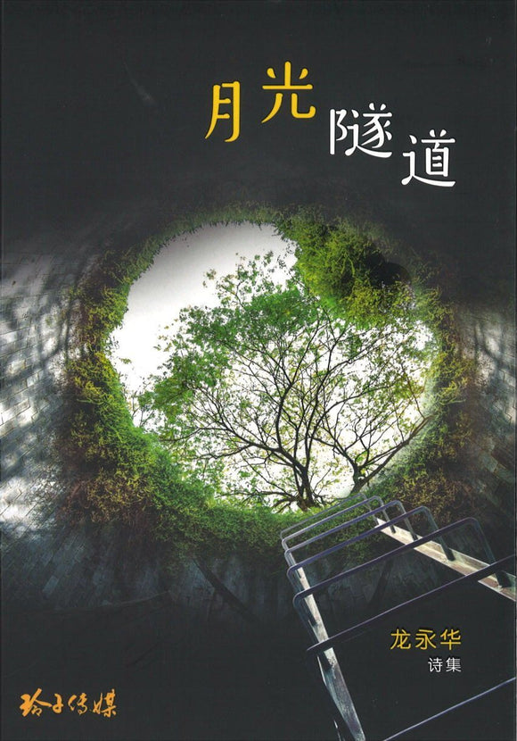 9789814856065 月光隧道 | Singapore Chinese Books