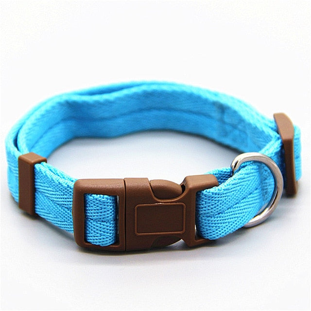 Dog Collar in 7 Groovy Colors - Small/Medium Dogs and Cats