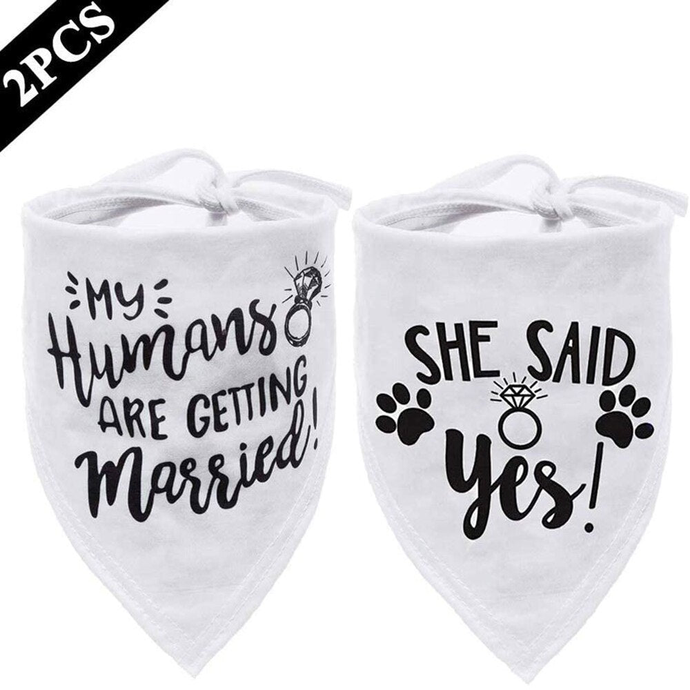 Wedding / Engagement Bandana's for Dogs or Cats