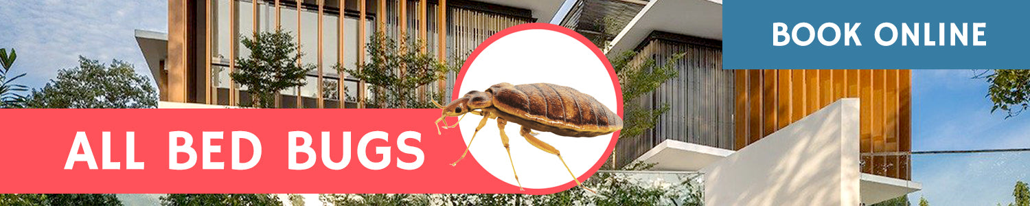 All Bed Bugs Services