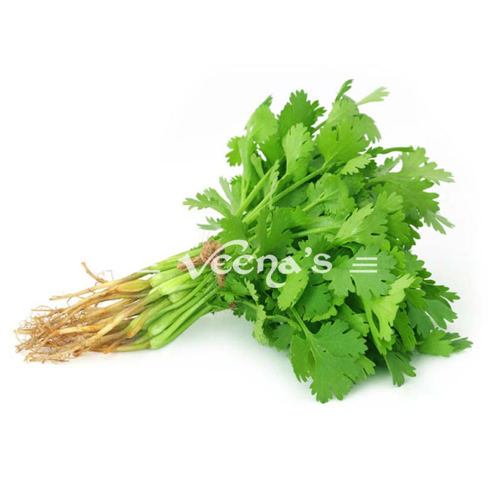 Fresh Coriander Leaf Bunch