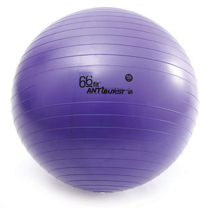 66fit Gym Ball 55cm Diameter in Purple color