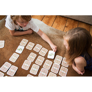 SEEING DOUBLE pairs cards memory game