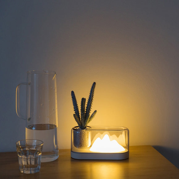 Nordic simple LED night light USB charging eye protection potted plant lights living room bedroom bedside table lamp