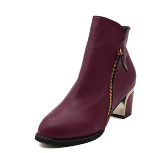 Autumn Winter Women  Martin Boots Female High Heel Thick with Side Zipper Large Size Ladies Boots