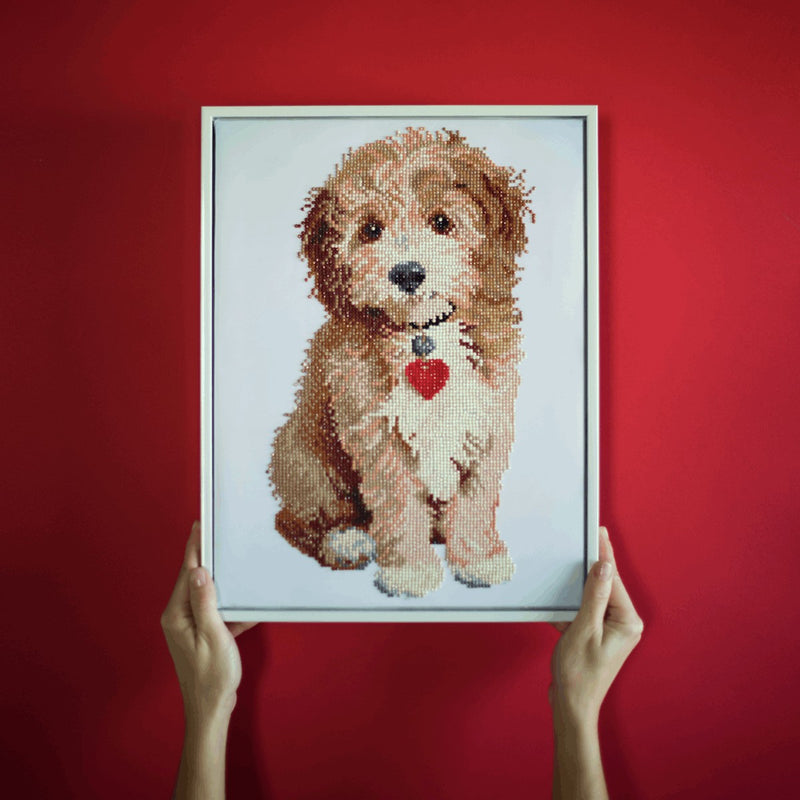 Diamond Dotz - Lovely Boy 32x42cm - Diamond Art