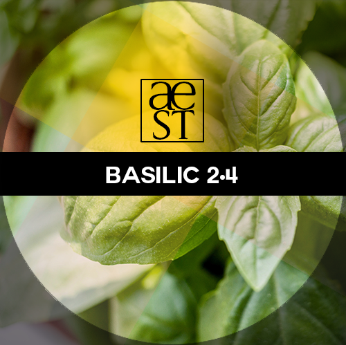 Basil 2.4 – Natural basil flavor with CBD