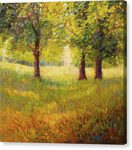 Summer Shadow - Canvas Print