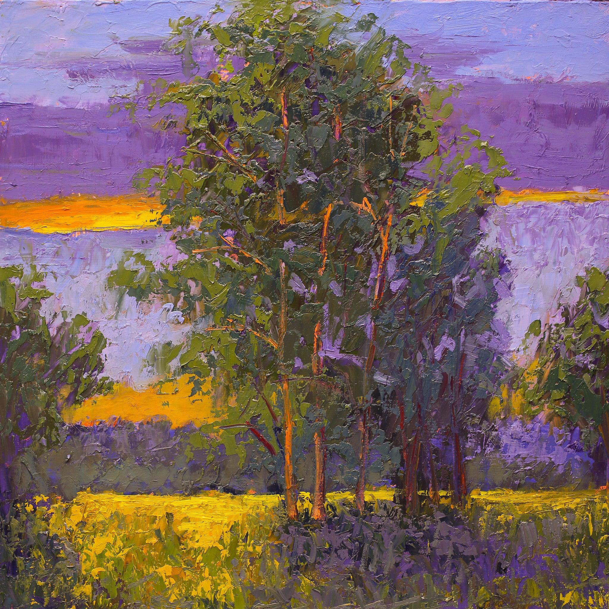 """Summer Dawn""  Kevin Liang 2019  Original oil on board with frame 18"" x 18"""