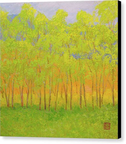 Early Spring - Canvas Print