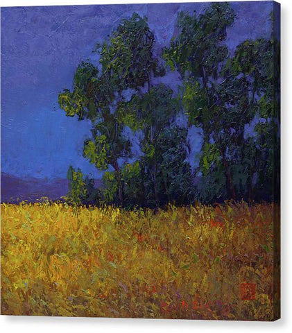 Summer Dawn- canvas print
