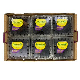 Blackberries 170gm x 12