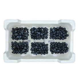 Blueberries 125gm x 12