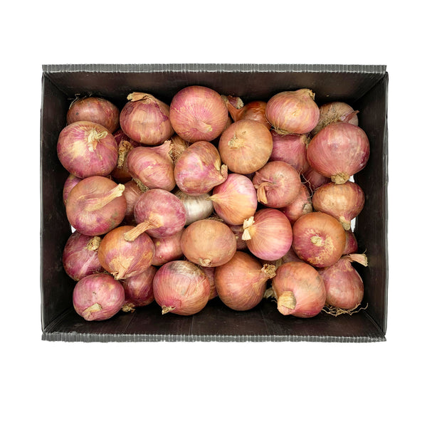 Onion Red 18 kg