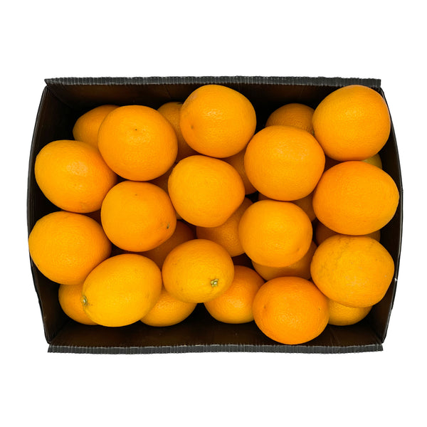 Orange Valencia 15Kg
