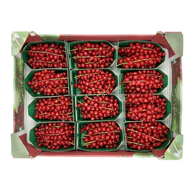 Red Currants 125gm x 12