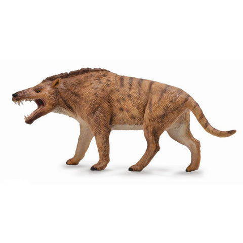 Andrewsarchus Deluxe 1:4 Scale