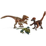 Feathered Raptors - Box Set Schleich