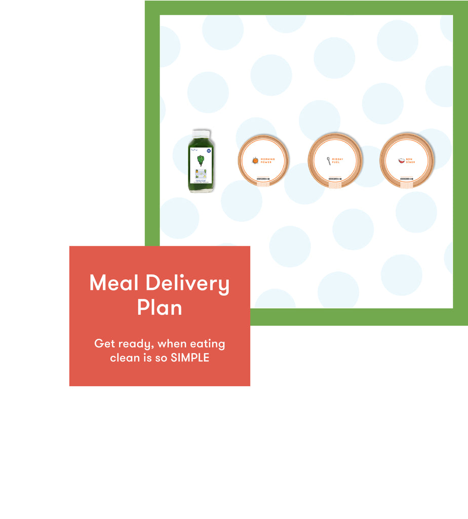 Meal Delivery Plan