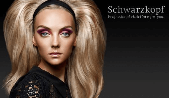 SCHWARZKOPF PRODUCT REVIEWS: PRODUCTS APT FOR INDIAN HAIR TYPE