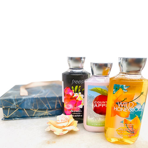 Bath & Body Works Nourish & Care Gift Set - 3 pcs (Customizable)