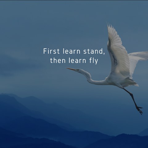 The Karate Kid First Learn to Stand Then Learn to Fly Crane Kick Miyagi Quote