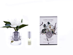 COTE NOIRE - PERFUMED NATURAL TOUCH SINGLE GARDENIAS - CLEAR