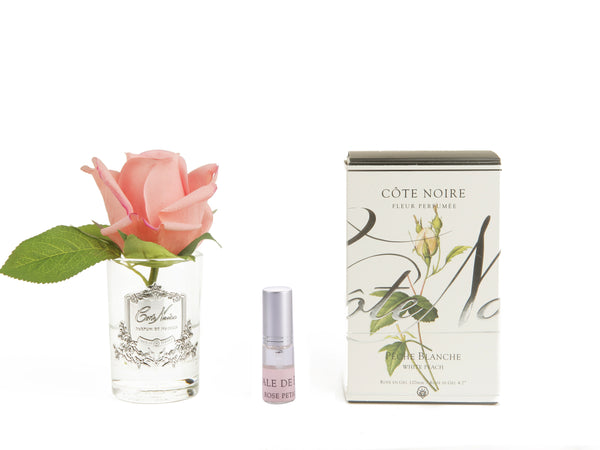 COTE NOIRE - PERFUMED NATURAL TOUCH ROSE BUD - WHITE PEACH