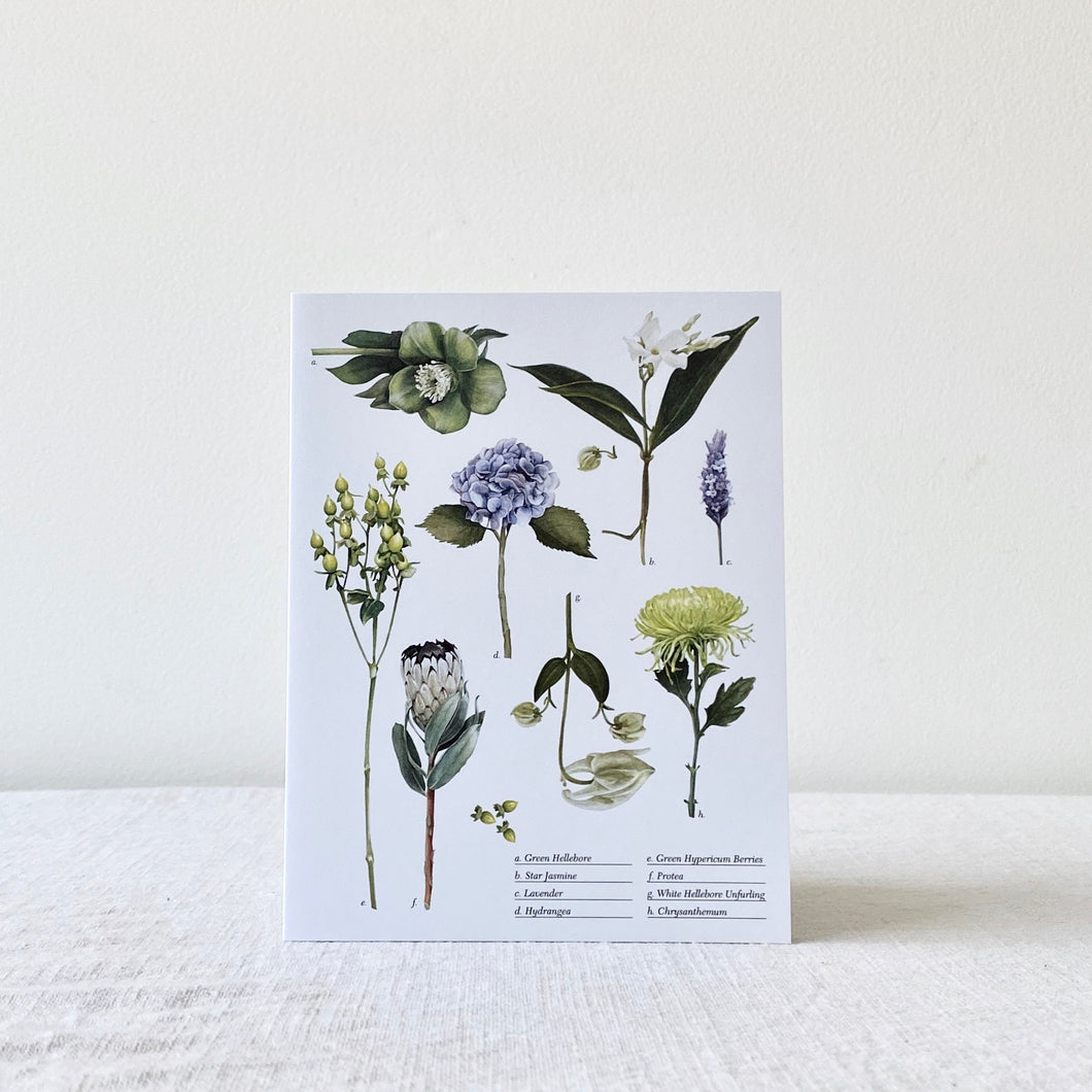 Card | Botanical Collection