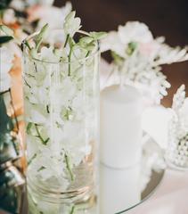 White clear wine glass turned into plant holder.