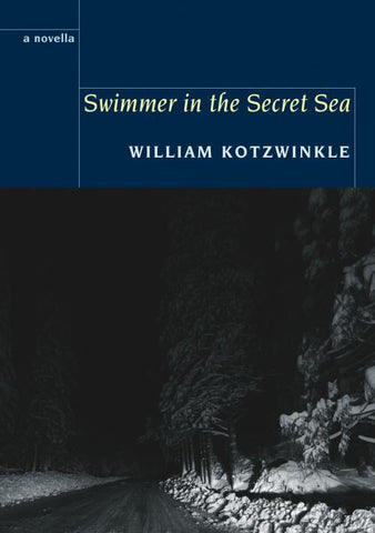 Swimmer in the Secret Sea