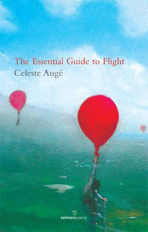 The Essential Guide to Flight