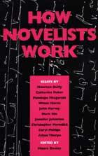 How Novelists Work