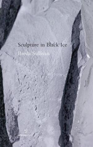 Sculpture in Black Ice