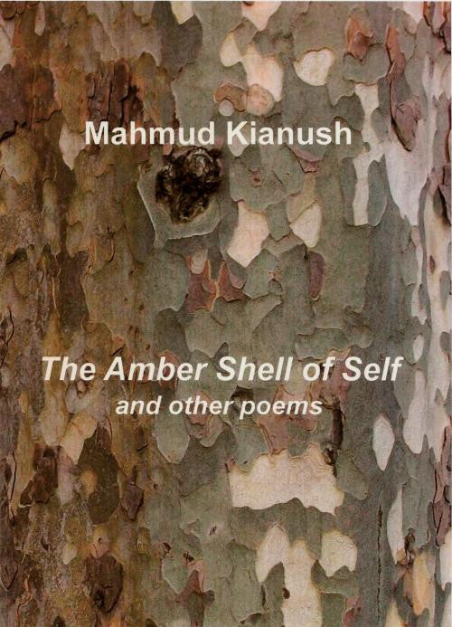 The Amber Shell of Self and Other Poems
