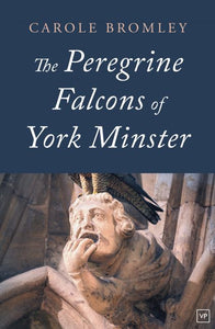 The Peregrine Falcons of York Minster
