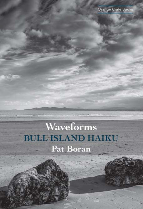 Waveforms: Bull Island Haiku