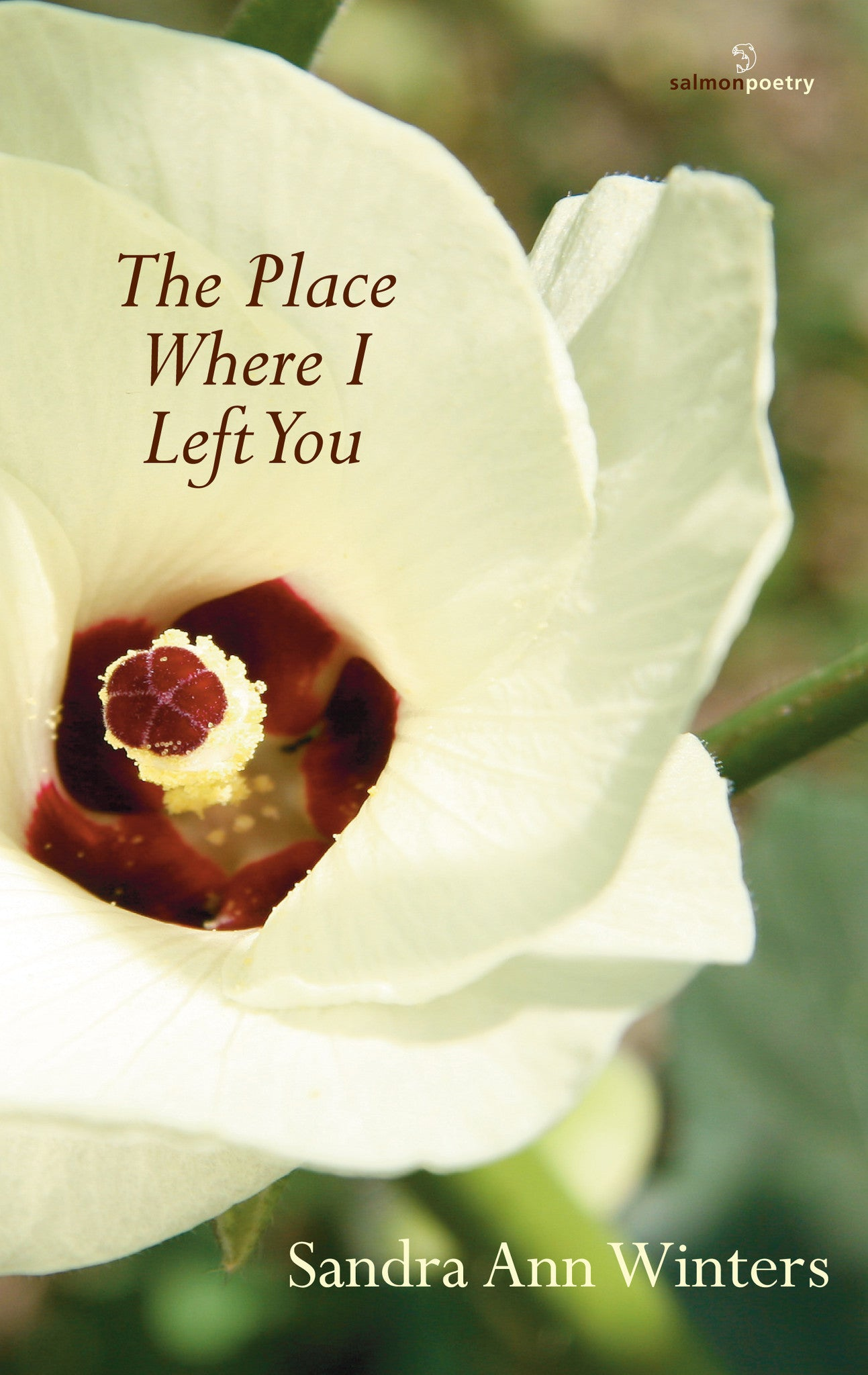 The Place Where I Left You